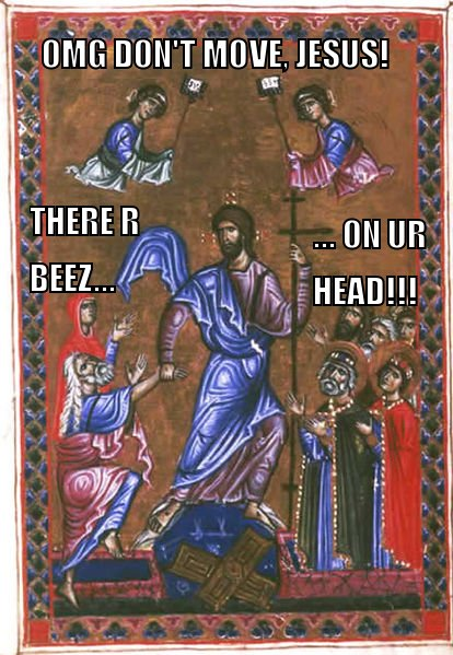 omg don't move Jesus! There r beez on ur head!
