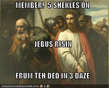 Member 5 sheckles