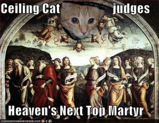 ceiling cat judges heaven's next top matyr