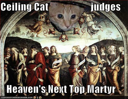 ceiling cat judges heaven's next top matyr