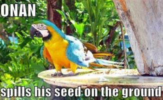 Spills his seed
