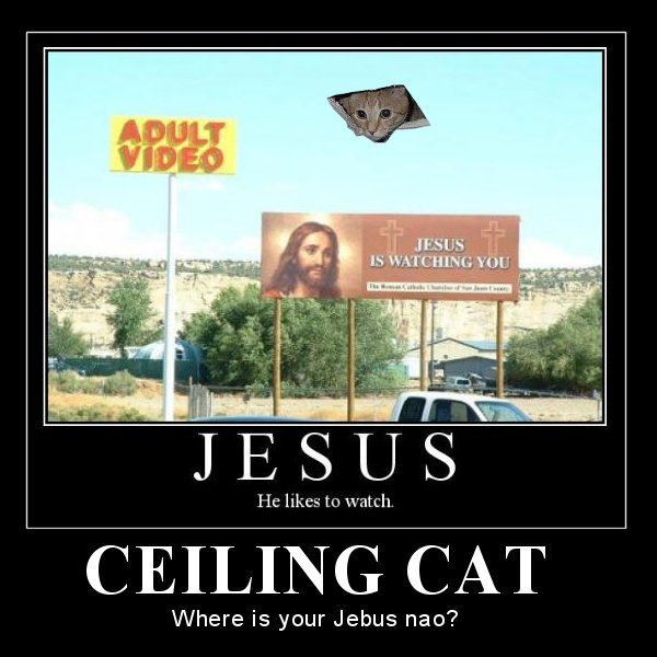 Ceiling Cat Where is your Jebus nao